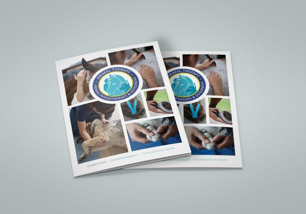 Veterinary Information Brochure