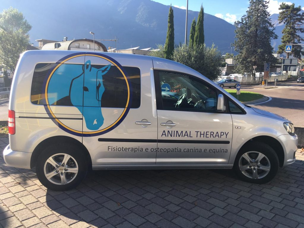 Veterinary Car Signage Side 1